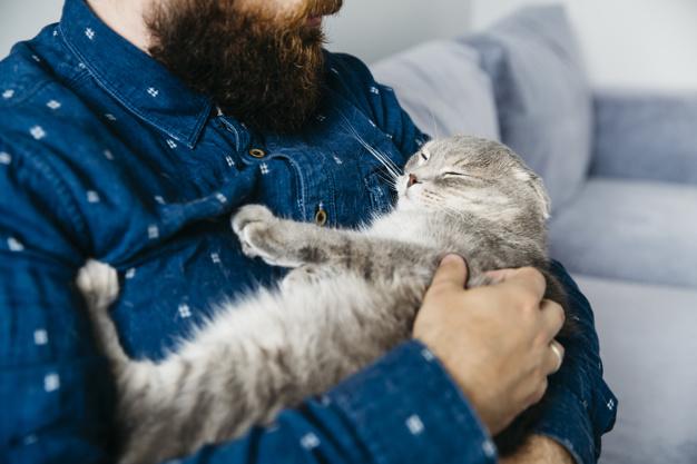 homem-segurando-maos-dormir-gato_23-2148181674